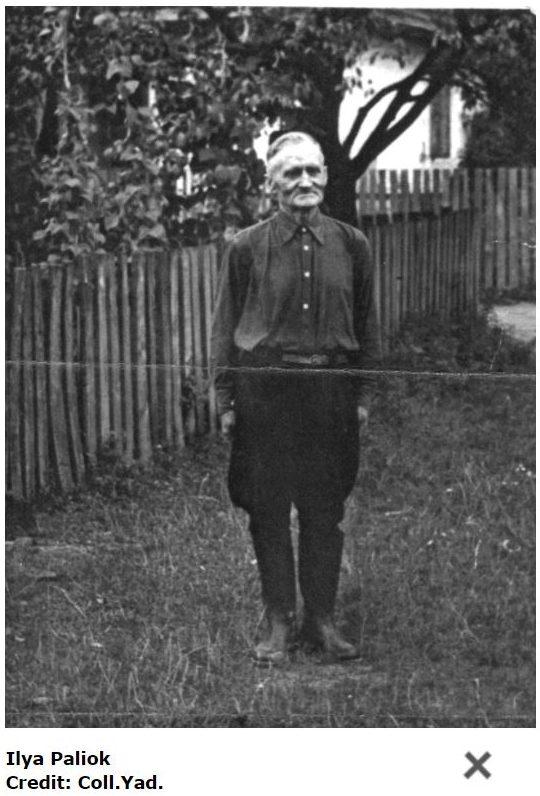 Ilya Paliok